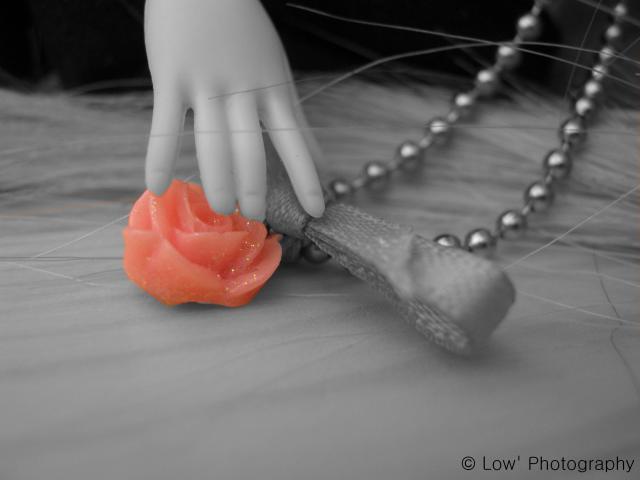 Zoé ~ Une Fleur vient d'éclore... ❤ 810015IMG0802