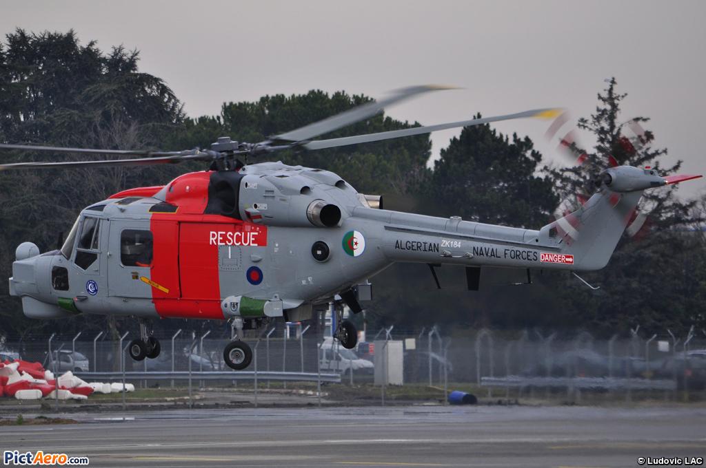 تركيب مروحيات الأغوستا + الأوروكوبتر في الجزائر 810170lynx