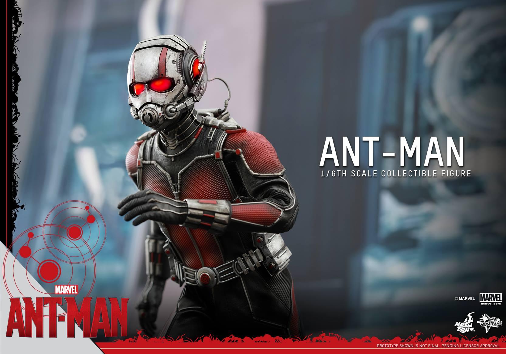 HOT TOYS - Ant-Man - Ant-Man 810797114