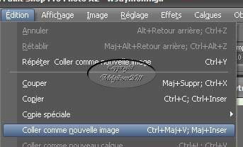 Tuto créer un tube parfait (PSP 12) 812700203