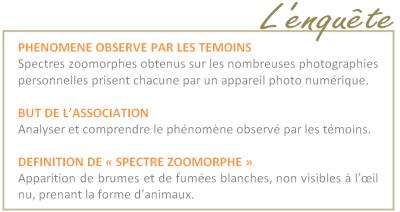 Spectres Zoomorphes 812779PrsSzoo