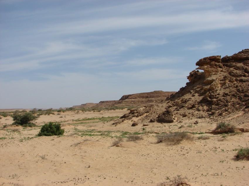 retour maroc 2012 - Page 2 813908049