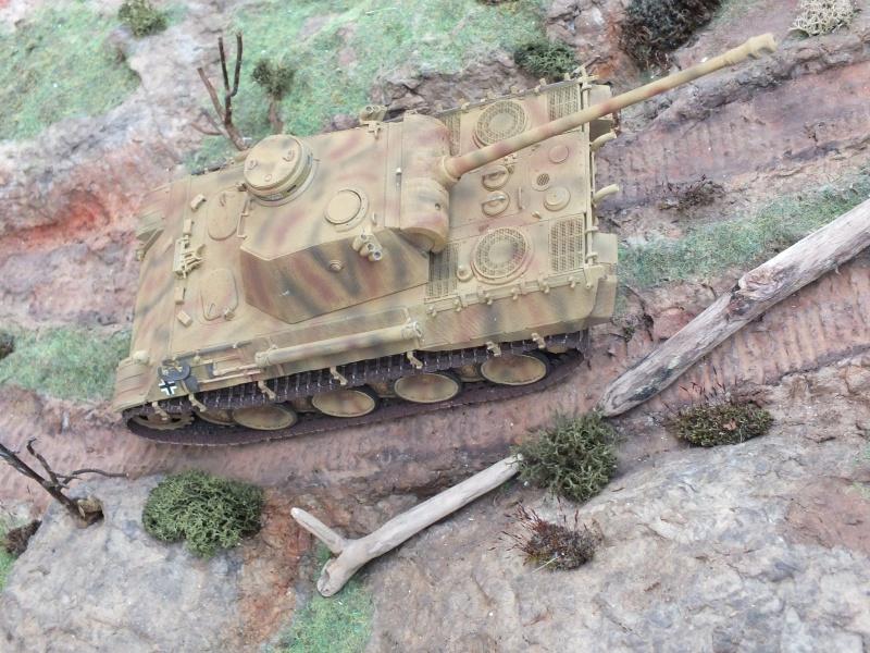 Panther Ausf D Dragon 1/35 avec Zimmerit réf. 6428 (FIN  DE PATINE , finitions lors de la  mise en place sur Dio) - Page 3 814296DSCF6429