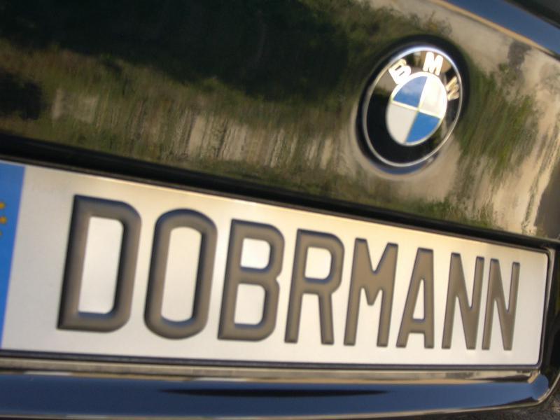 [BMW 530 d E39] Renaissance d'un Cosmos Schwarz Metallic 814515P1010131