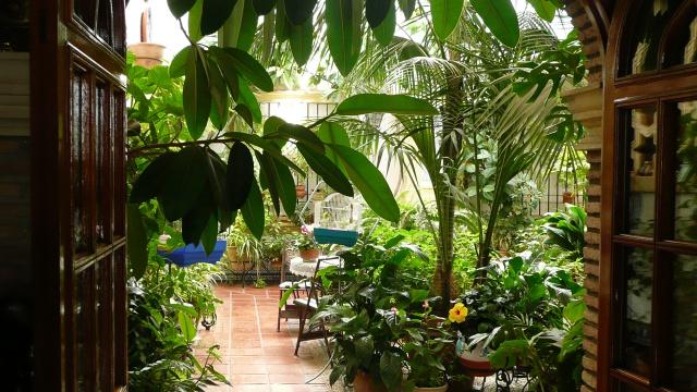Andalousie Octobre 2011 815348P1100427