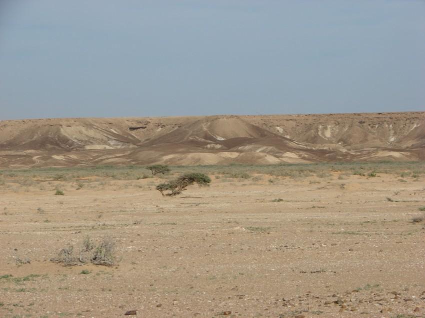 retour maroc 2012 - Page 2 817960024