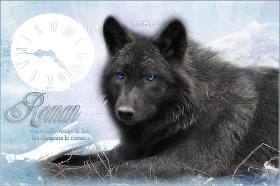 Winterfell - ♂ - Moody 818100Roman