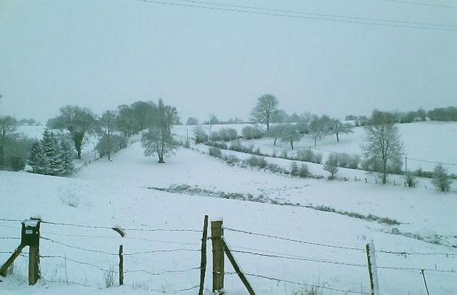 Mercredi 06 janvier 2010 - (Neige à Pont Farcy - 7 à 10 cm) 821246campeauxneige6