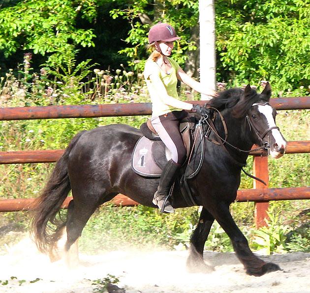 Black Opal et Rosie 823035IMG0607