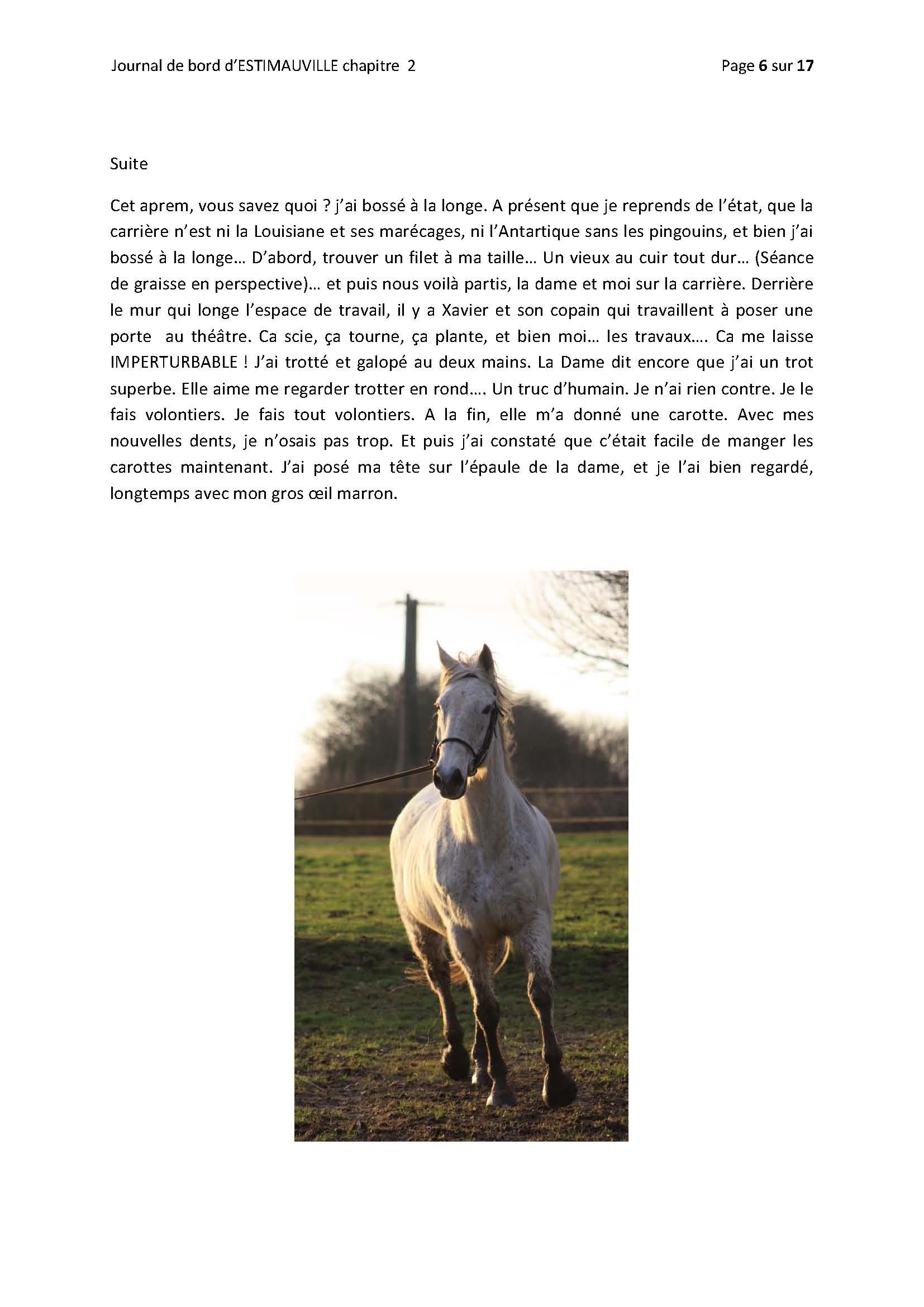 (dpt 76) ESTIMAUVILLE Pur sang Anglais, né en 2001, hongre, en FA chez Michèle76 - Page 5 825518FEVRIERPage06