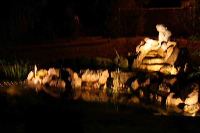 bassin 5/6 m3 semi enterré avec cascade et déversoir 835179IMG3006