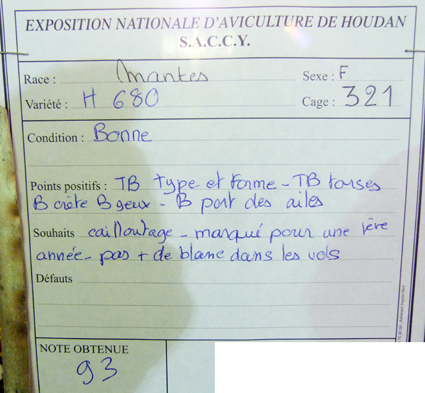 exposition d'aviculture Foire ST MATTHIEU 27 et 28 Septembre 2014 - Page 3 840019P1150645
