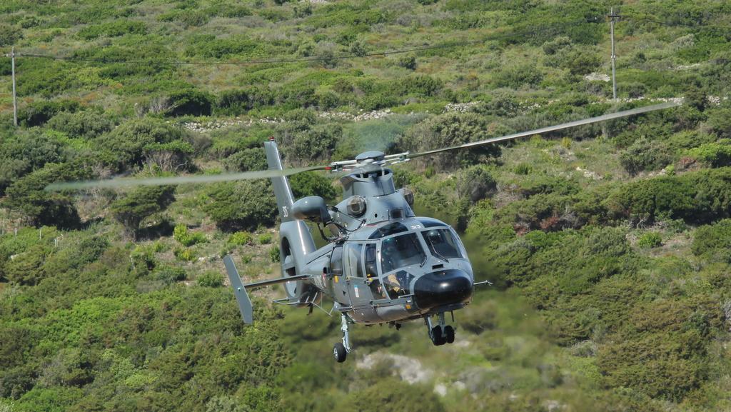 [ Aéronavale divers ] Hélicoptère DAUPHIN - Page 5 841296PERTUSATOJUIN2015025
