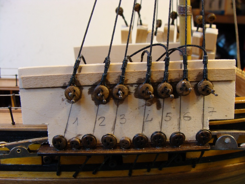 HMS Unicorn 1/75 COREL  - Page 2 842284DSC01377