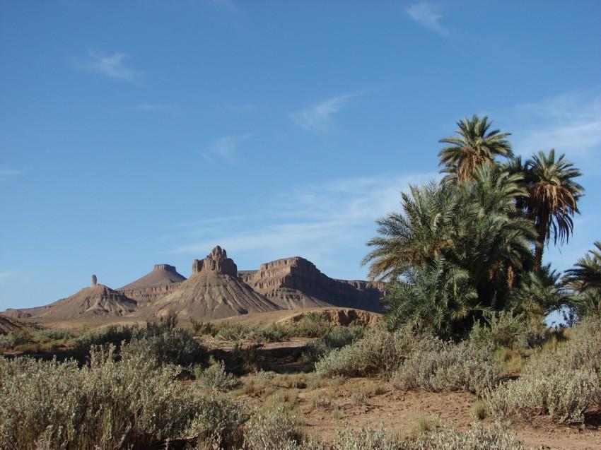 retour maroc 2012 - Page 2 845662141