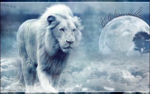 Gallerie d'un Loup Rôôse ♪♫ 851773Et_le_lion_oublie_1