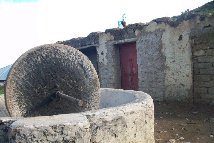 معاصر الزيتون التقليدية تراث في طريق الانقراض 859198155515107758745964011100001896595737667307246160n