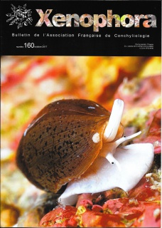 2017 - 10 / XENOPHORA N°160 et TAXONOMY N°17 862718Xno160couverture