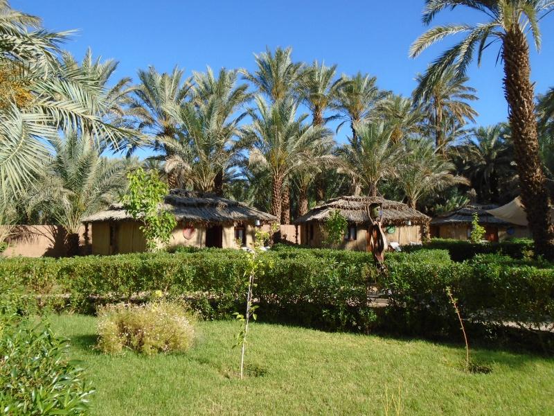Maroc 2016 de Franck, Speedy et Maxou - Page 2 863631DSC00559