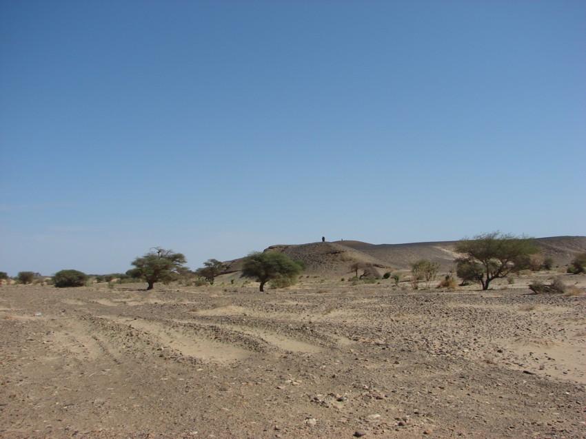 retour maroc 2012 - Page 2 869425063