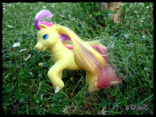 Les petits poneys de sOoZ - G1 à G5 869805P1140839
