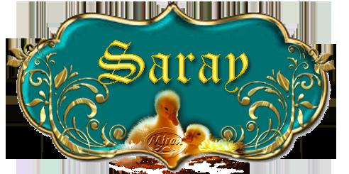 Nombres con S - Página 3 8709542Saray