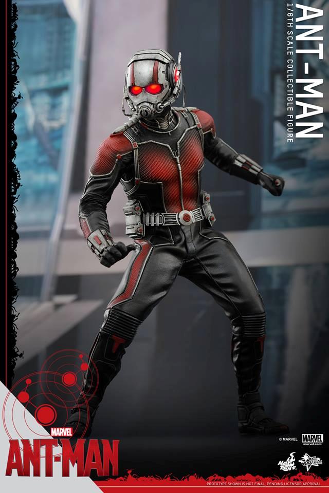 HOT TOYS - Ant-Man - Ant-Man 872086106