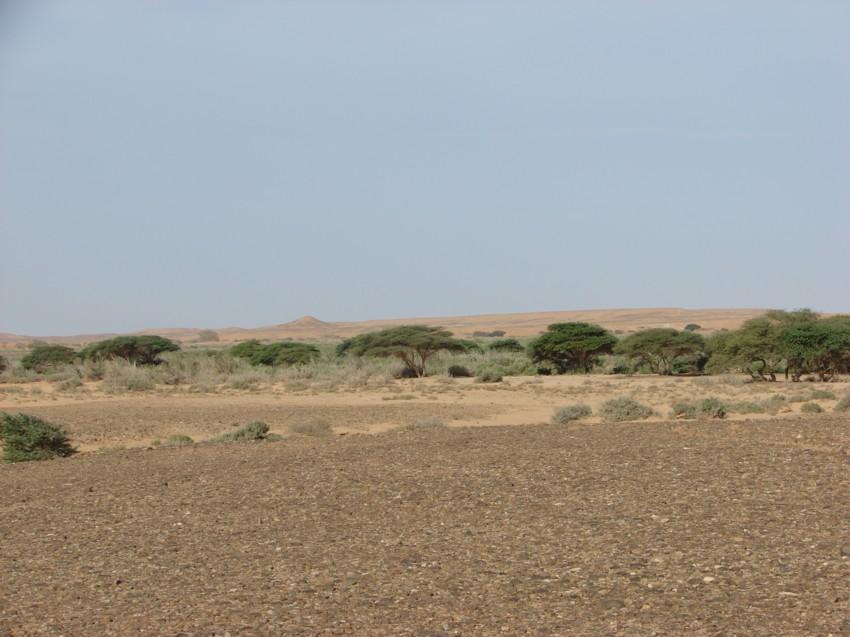 retour maroc 2012 - Page 2 877049038