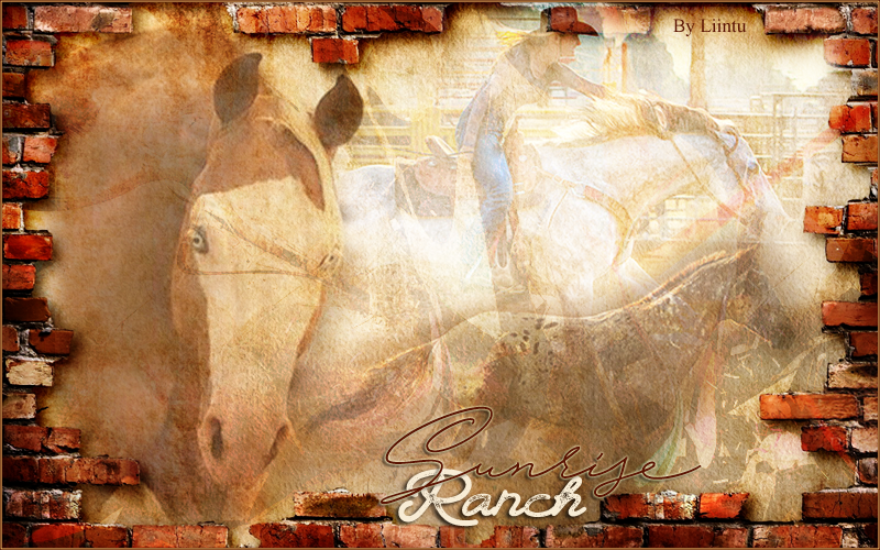 ℧ Sunrise Ranch ℧