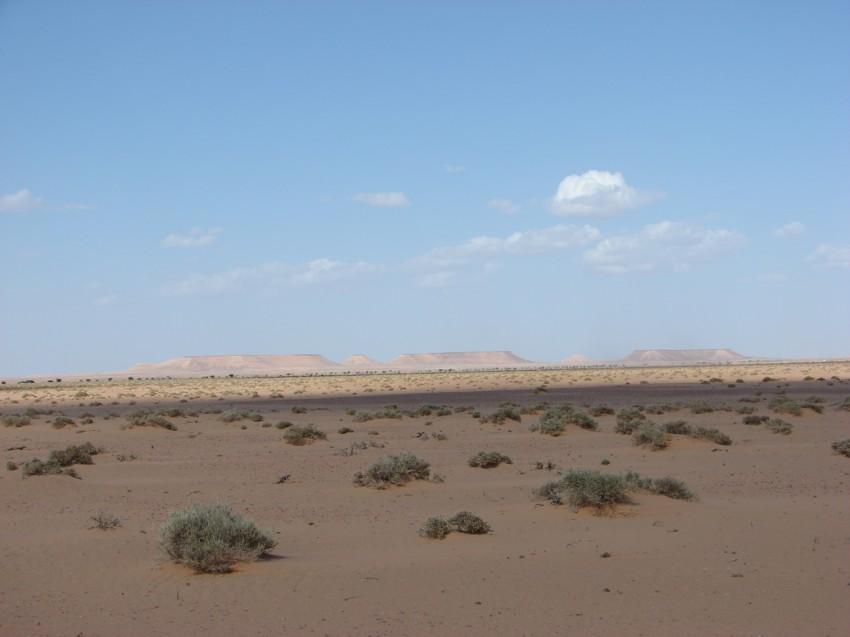 retour maroc 2012 - Page 2 881059101
