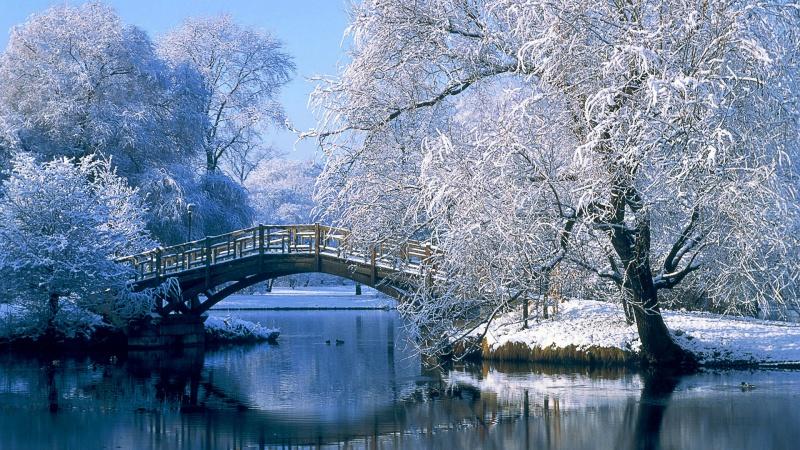 Voici l'hiver 8825410000000000000000000000000000000000
