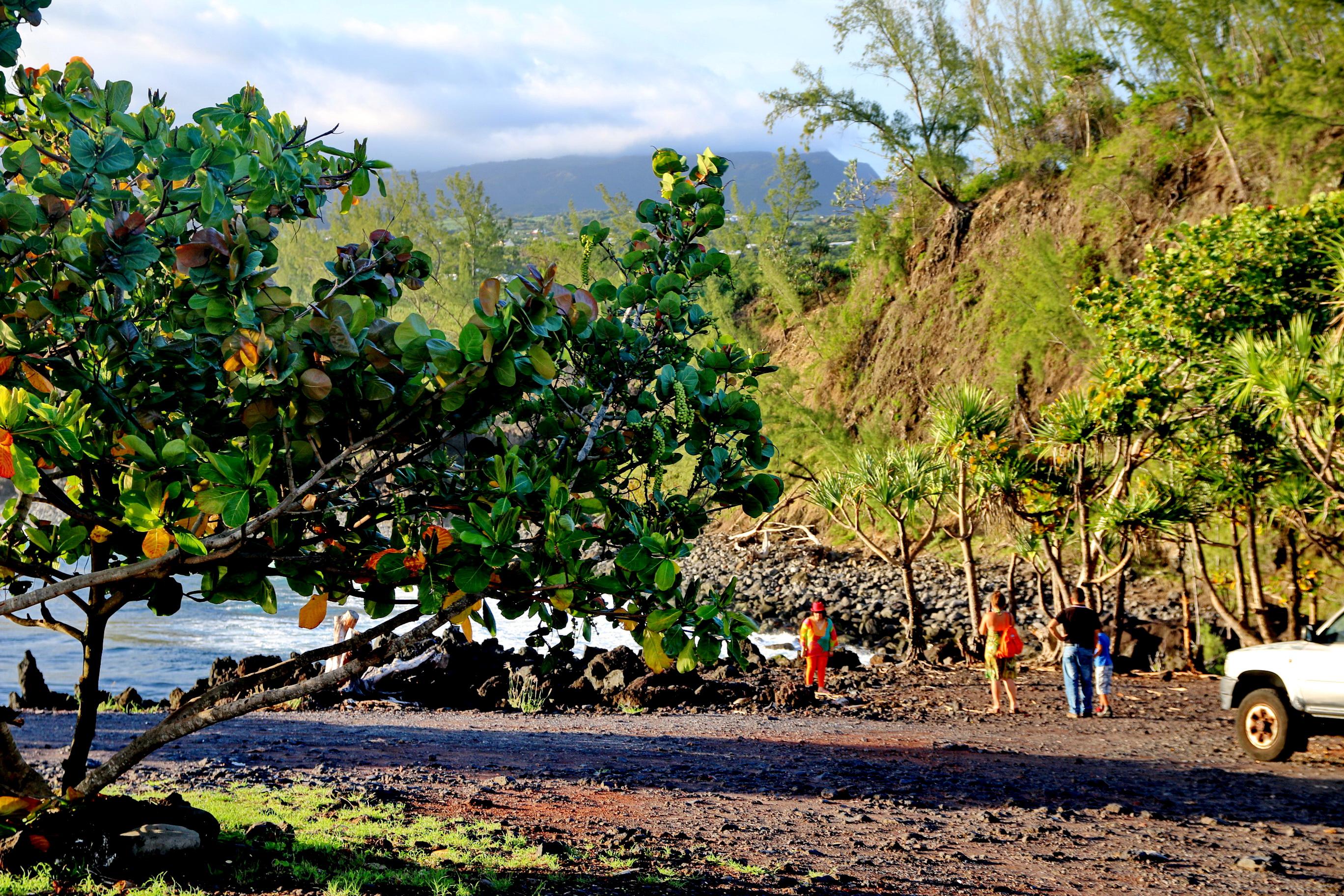 [Vie des ports] Les ports de la Réunion - Page 5 884002capmchantlangevin158