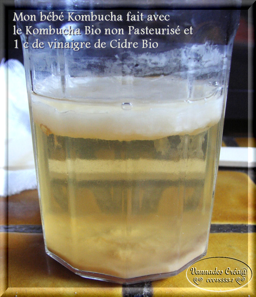 "Le Kombucha""Boisson Merveilleuse"" pour moi 887045BbKombucha2"