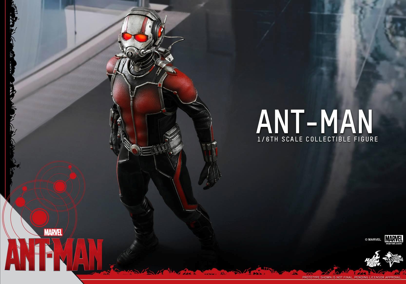 HOT TOYS - Ant-Man - Ant-Man 887540107