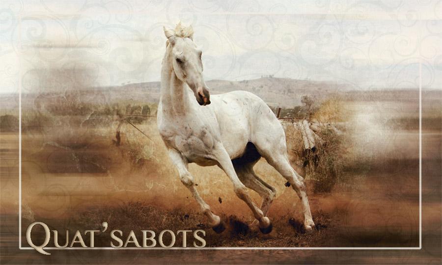 Quat'Sabots