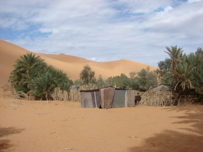 retour maroc 2012 - Page 2 891959180