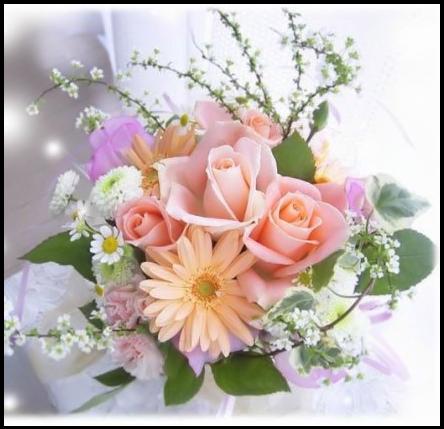 Tubes roses 8920326084c6b6