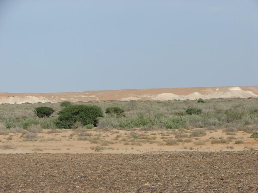 retour maroc 2012 - Page 2 893033037