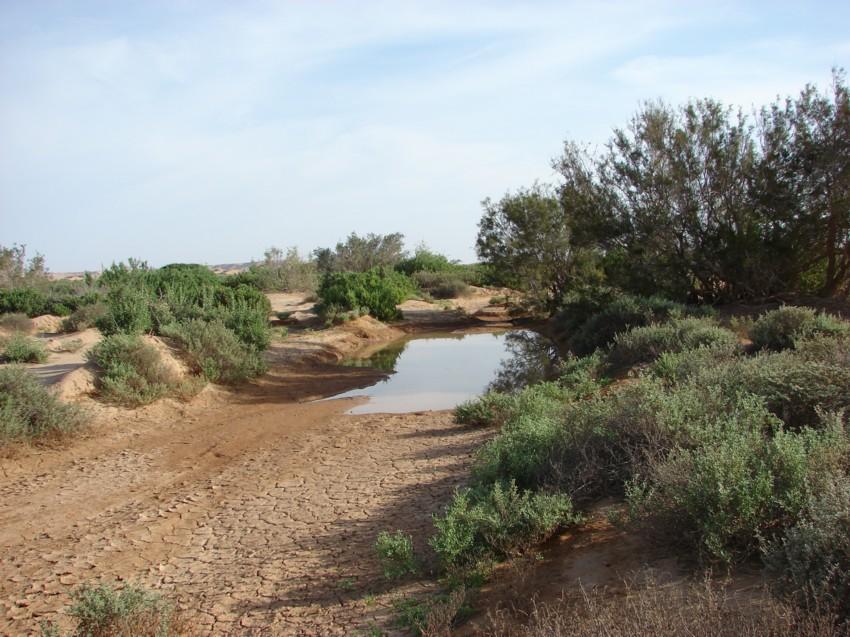 retour maroc 2012 - Page 2 893599034