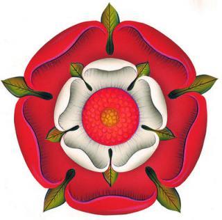 Rose double 893892tumblrl0f555rAtZ1qb2fjbo1400