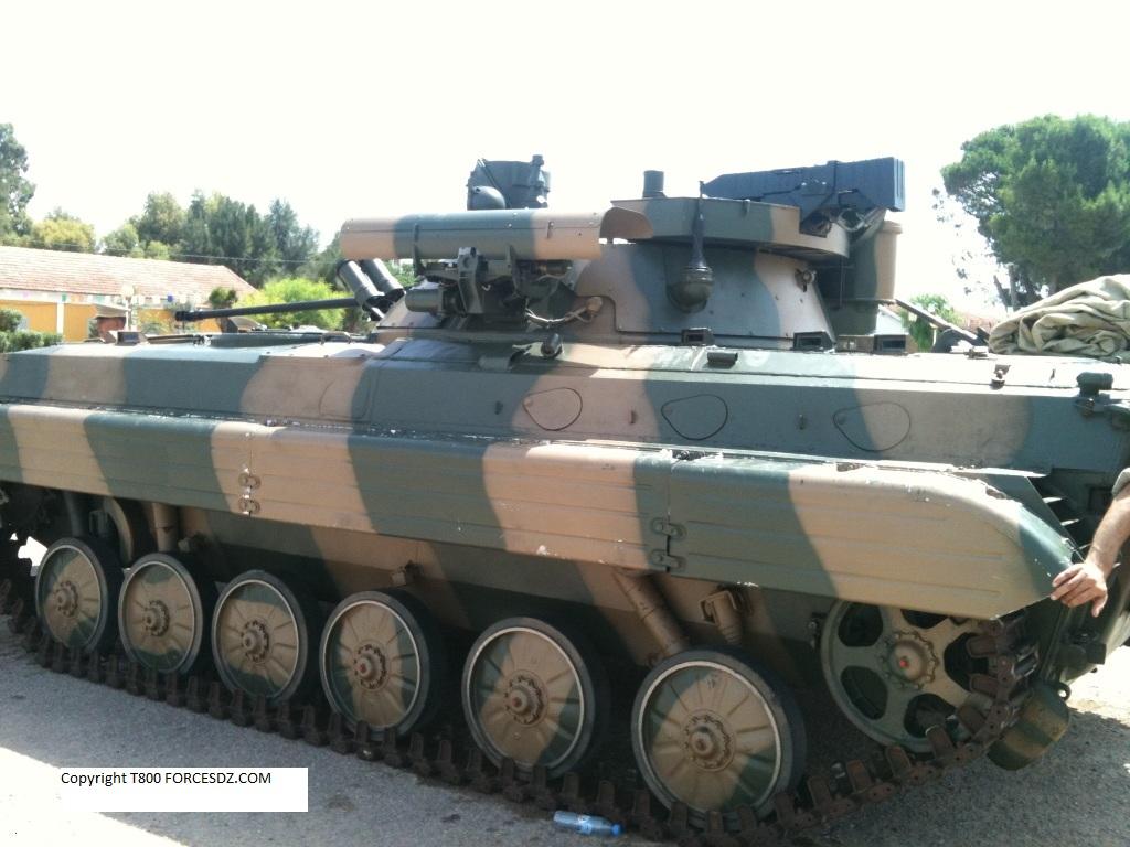Soviet IFV BMP-1 & BMP-2 - Page 6 898935newnew838814IMG07871