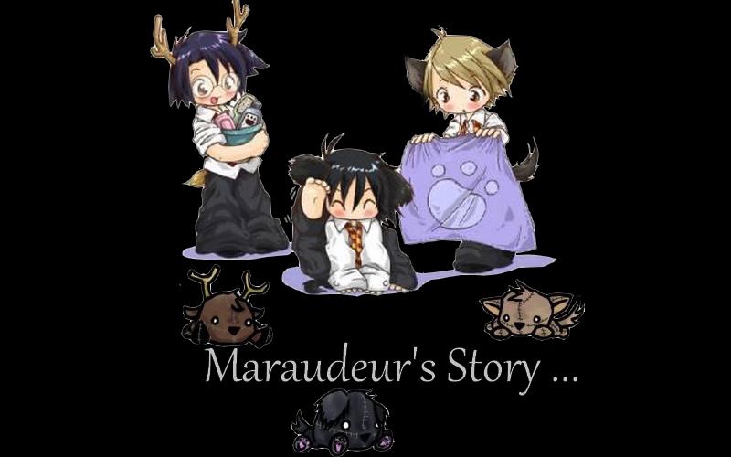 Maraudeur's Story