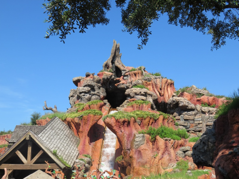 Walt Disney World + Universal Studios + Sea World + Busch Gardens Summer 2014 - Page 4 900032IMG0793