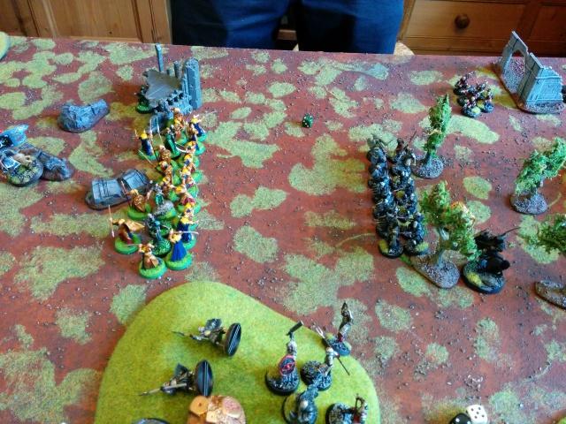 Mordor vs Arnor/Royaumes sylvestres 1000pts 900088IMG20150627165350