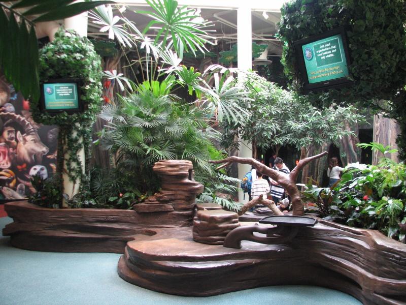 [18-31 octobre 2014] Voyage de noces à Walt Disney World et à Universal - Page 12 901294rafikisplanetwatch1586173