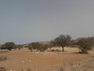 Essaouira.... 90548220120818114551