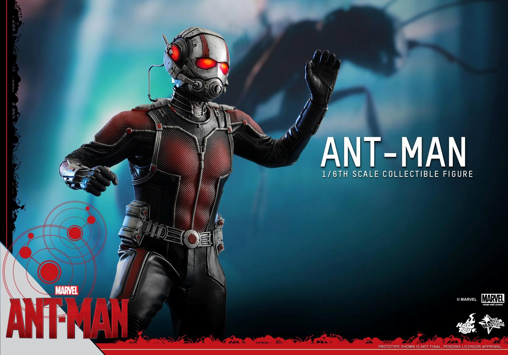 HOT TOYS - Ant-Man - Ant-Man 906377111