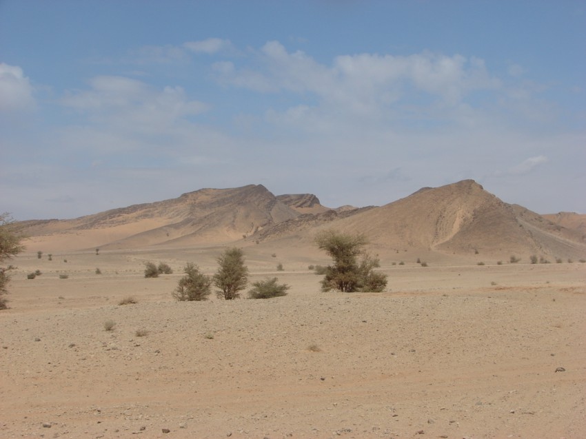 Le Grand Sud du Maroc - II 910962152