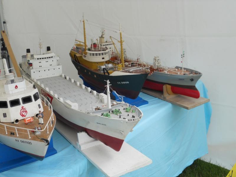 démo de maquettes navigantes sur la place Napoléon à la Roche S/Yon le 31 Mai et le 1er Juin 913077DSCN4027