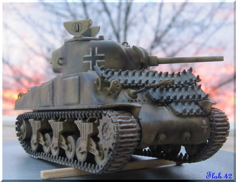 Beutepanzer Sherman M4A2 - Dragon - 1/72ème  914547termin2